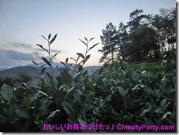 CIMG0384